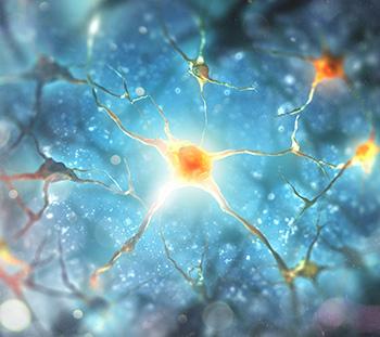 Neurorevalidatie Behandeling