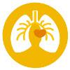 hart-vaat-en-longfysiotherapie